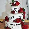 9-3-16 Nina & Tom Cake  (4)