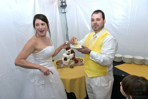 9-3-16 Nina & Tom Cake  (12)