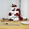 9-3-16 Nina & Tom Cake  (5)