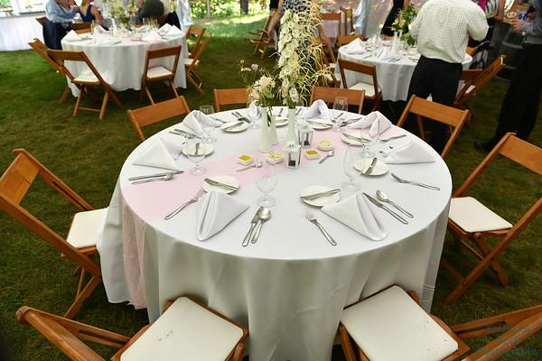 7-2-17 Conroy Wedding and Reception  (232)