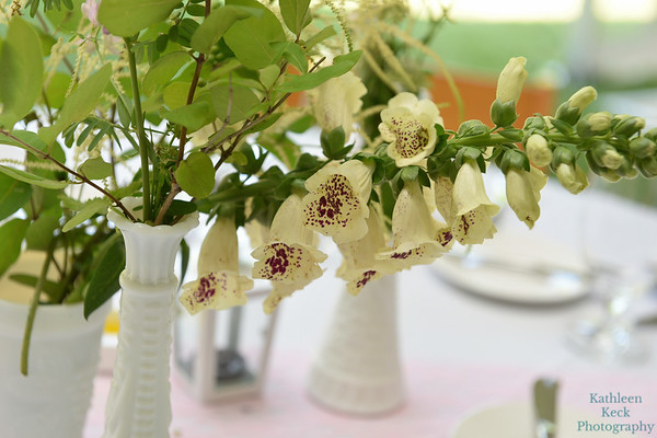 7-2-17 Conroy Wedding and Reception  (230)