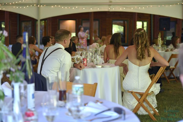 7-2-17 Conroy Wedding and Reception  (380)