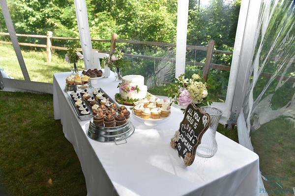 7-2-17 Conroy Wedding and Reception  (246)