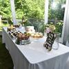 7-2-17 Conroy Wedding and Reception  (247)