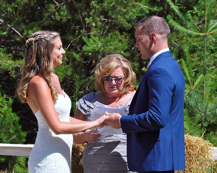 7-2-17 Conroy Wedding and Reception  (184)