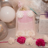 2017_Painter_Bridal_Shower-69