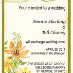 2017-04-29 Bill Chaney - Bonnie Hacking Wedding & Reception_0001