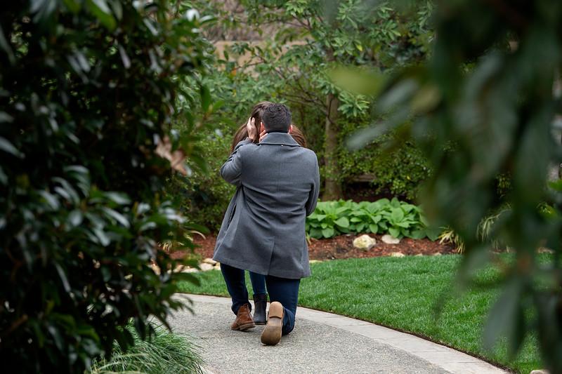 Josh Cañas Proposal