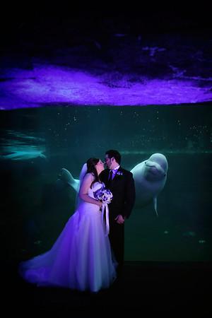 5-3-19 Catlin & Mike | Mystic Aquarium
