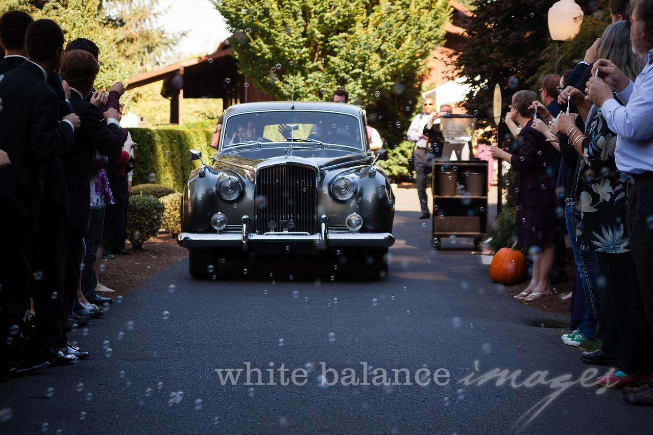 AJ & Shannon Wedding-1668