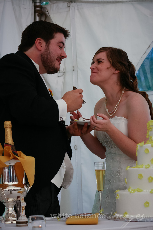 AJ & Shannon Wedding-1228