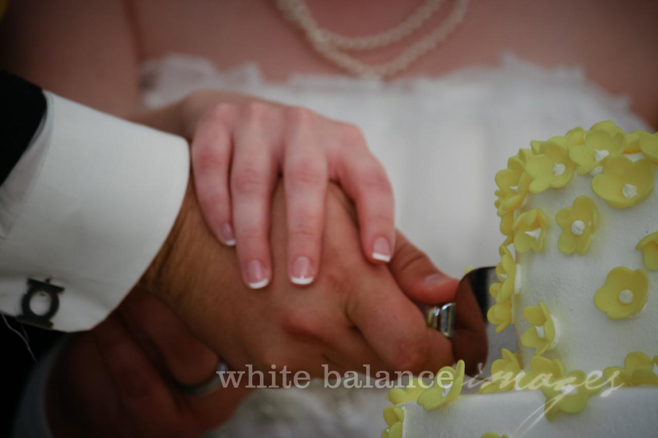 AJ & Shannon Wedding-1207