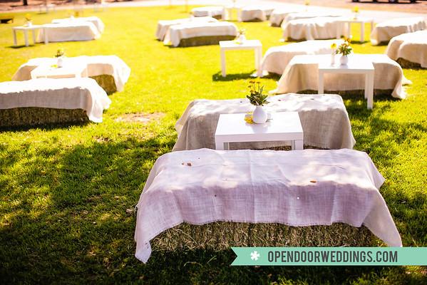 Reception (Aaron and Ashley's Wedding)