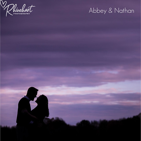 Abbey & Nathan: Guestbook