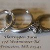 Harrington Farm - Sklar -0183