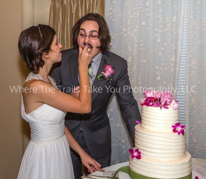 Feeding Kyle Cake
