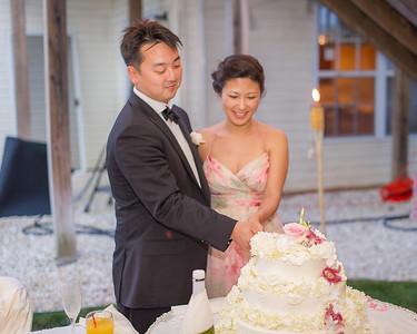 Aena & Andrew's Wedding Reception