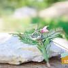 Alana+MIke ~ Wedding_008