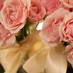 Gina_26Aug2011_0021