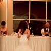 Ferraro_Joliet-Wedding_390