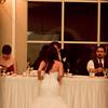 Ferraro_Joliet-Wedding_390