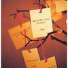 Ferraro_Joliet-Wedding_300