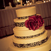 Ferraro_Joliet-Wedding_308