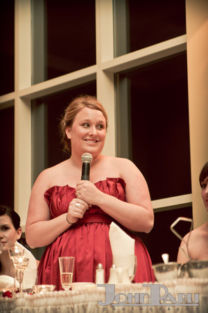 Ferraro_Joliet-Wedding_376