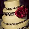 Ferraro_Joliet-Wedding_303