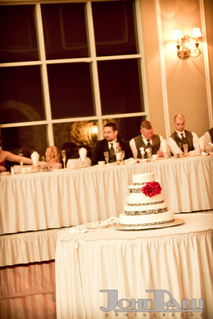 Ferraro_Joliet-Wedding_358