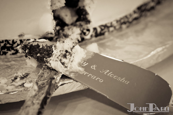 Ferraro_Joliet-Wedding_361