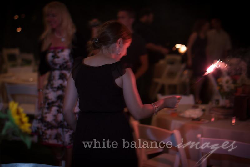 Lauren & Alex's Wedding 1077