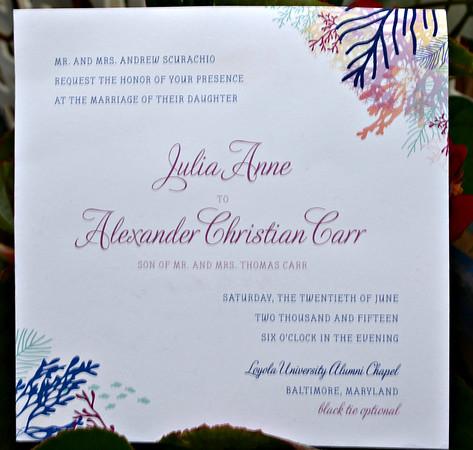 Alex and Julia Anne Wedding