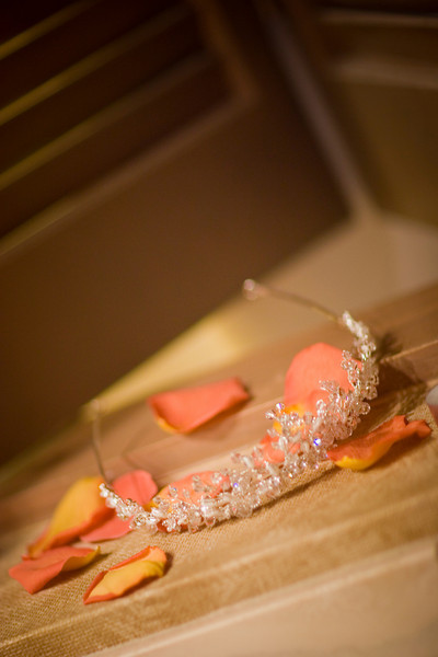 Teeple Wedding0030