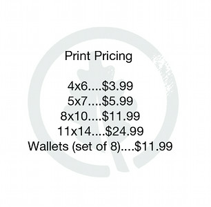 Wedding Gallery Print Pricing