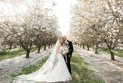 Alexandria Vail Photography Blossom Wedding Allen 013