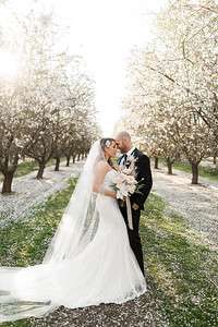 Alexandria Vail Photography Blossom Wedding Allen 016