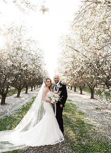 Alexandria Vail Photography Blossom Wedding Allen 011