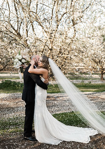 Alexandria Vail Photography Blossom Wedding Allen 008