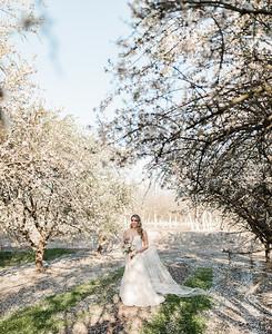 Alexandria Vail Photography Blossom Wedding Allen 002