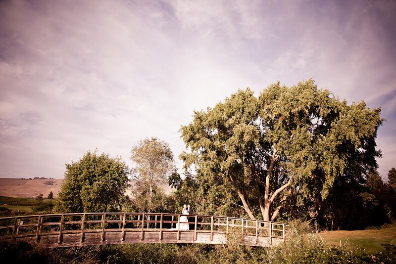 2010.10.16 Amy Stutte & Rick Rubalcava Wedding at Chardonnay Country Club Napa, CA