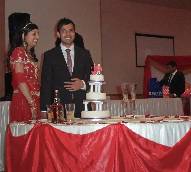 Anand and Gayatri Reception