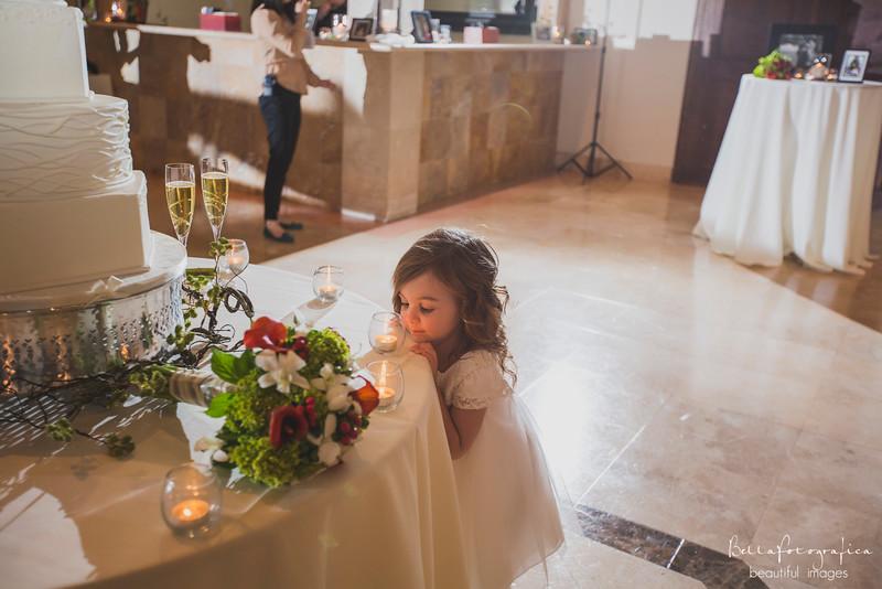 Andrea-Aaron-Wedding-2016-527