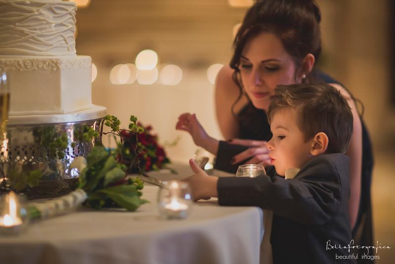 Andrea-Aaron-Wedding-2016-516