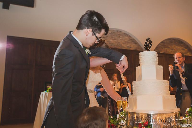 Andrea-Aaron-Wedding-2016-532