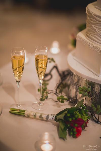 Andrea-Aaron-Wedding-2016-463
