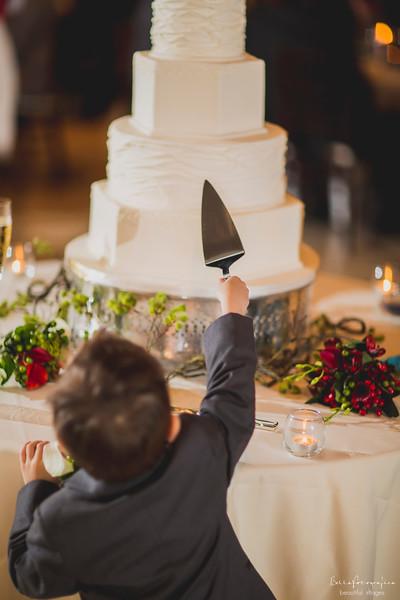 Andrea-Aaron-Wedding-2016-515