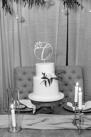 02050©ADHPhotography2020--AndrewLaurenCarpenter--Wedding--JULY18bw