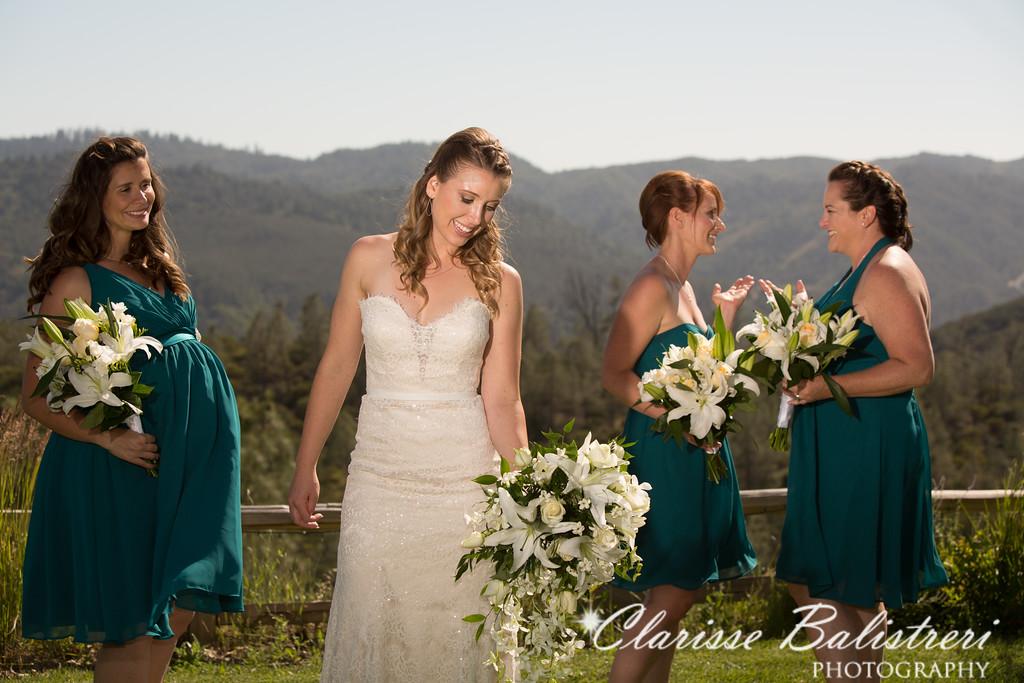 6-12-16 Rachel -Andy Wedding-326