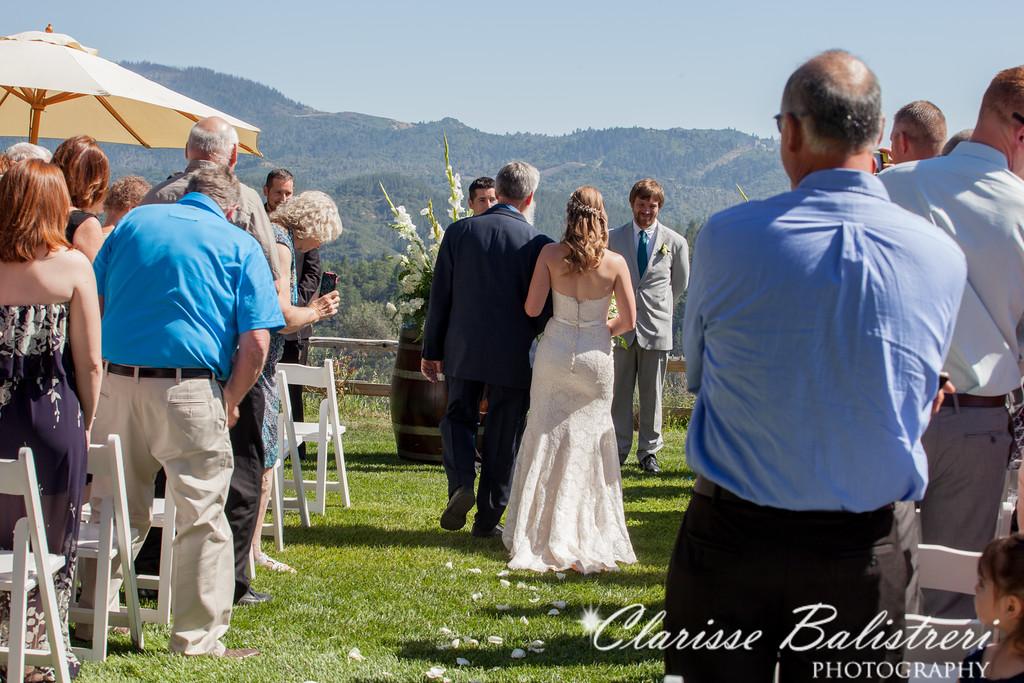 6-12-16 Rachel -Andy Wedding-214